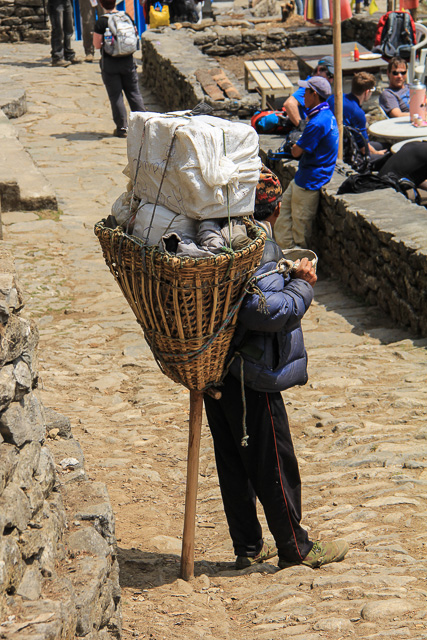 Porter at Thado Koshi on Everest Base Camp Trek