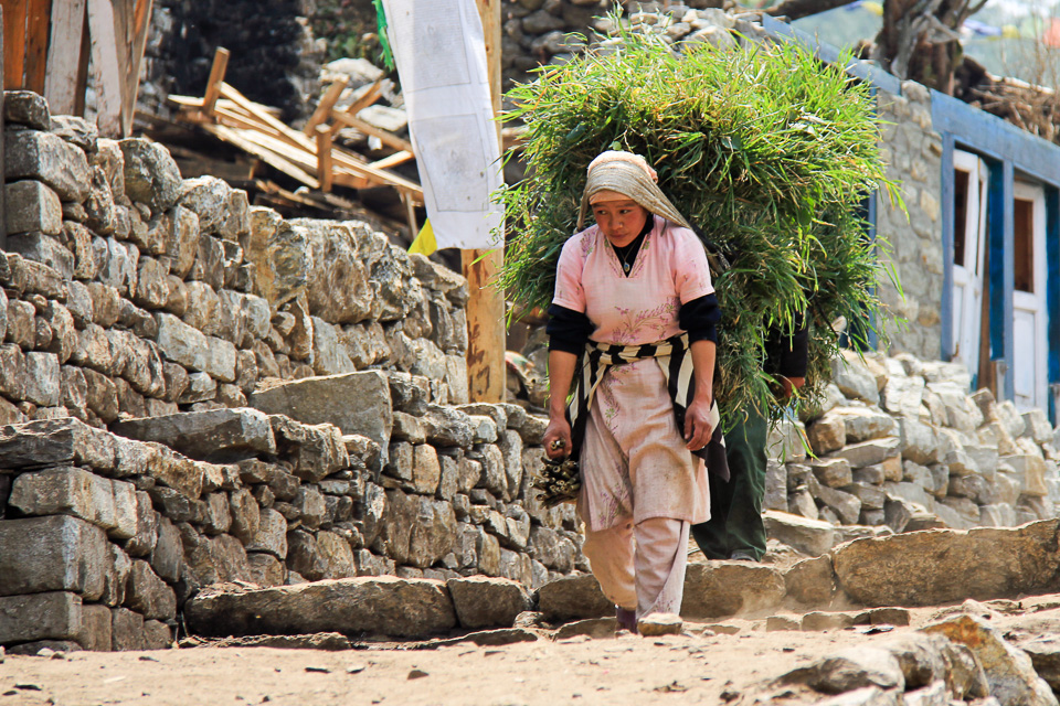 Nepalese lady carrying load