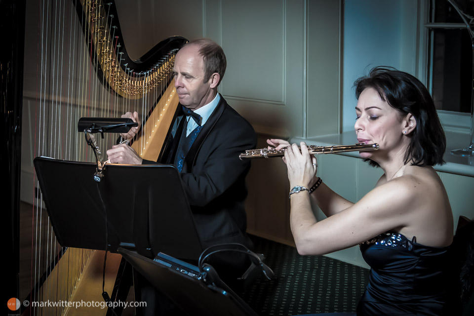 City of London Musicians - Duo playing harp